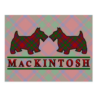 Clan MacKintosh Tartan Scottie Dogs Postcard