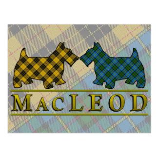 Clan MacLeod Tartan Scottie Dogs Postcard