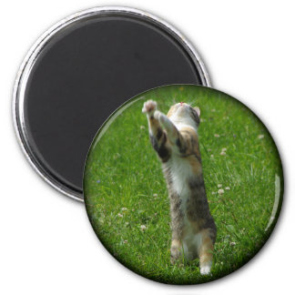 Clap you hands and stamp your feet 2 inch round magnet