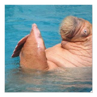 Clapping Walrus  Invitations