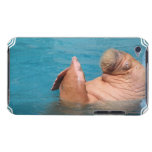 Clapping Walrus iTouch Case iPod Touch Case-Mate Case
