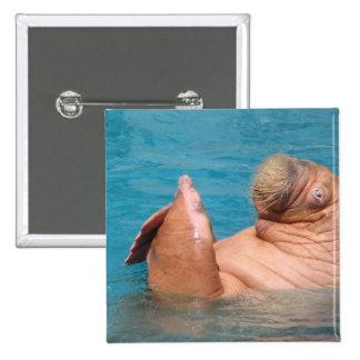 Clapping Walrus Pin