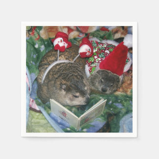 Clara and Maude Holiday Paper Napkins
