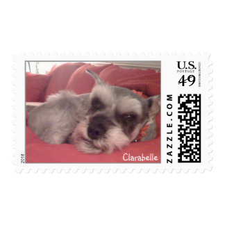 Clarabelle the Miniature Schnauzer Postage Stamps