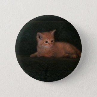 Clarence Pinback Button