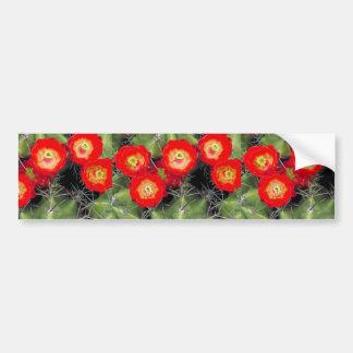 Claret cup cactus bumper sticker