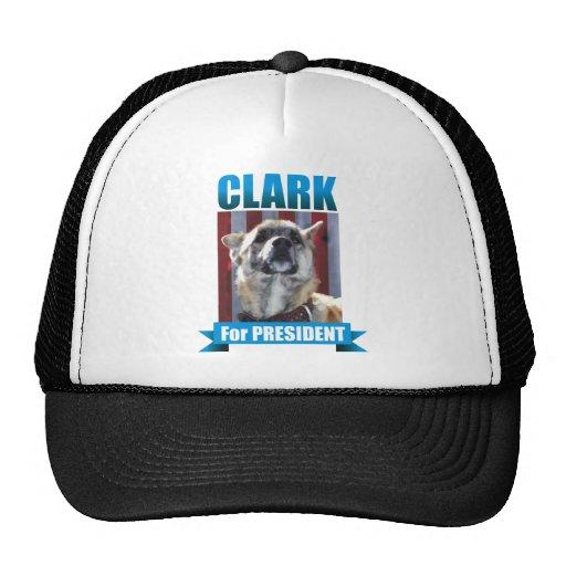 CLARK DOG HAT