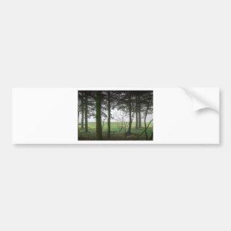 Claro de desatención del bosque en la niebla pegatina para auto