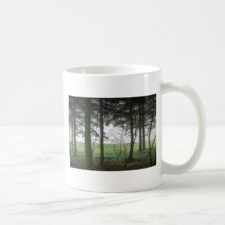 Claro de desatención del bosque en la niebla taza de café