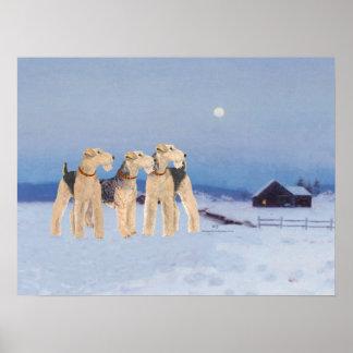 Claro de luna del invierno póster