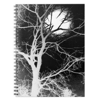 Claro de luna notebook