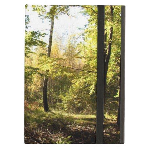 Claro del bosque