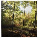 Claro del bosque servilletas de papel