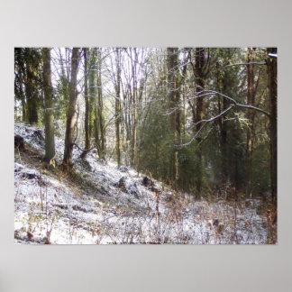 Claro Sunlit del bosque Nevado Impresiones