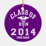 Clase de 2014 BSN Ornamentos De Navidad