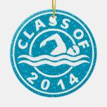 Clase de la natación 2014 adorno de navidad