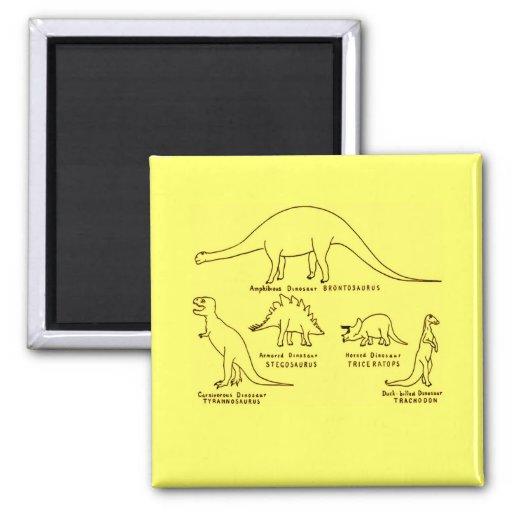 Clasificación del dinosaurio imán cuadrado
