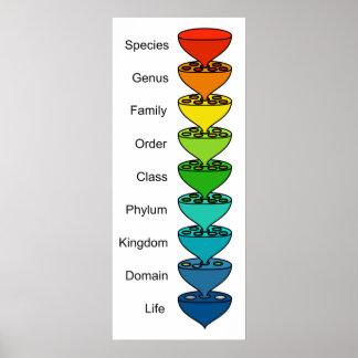 Clasificar la diversidad de la carta orgánica de l póster