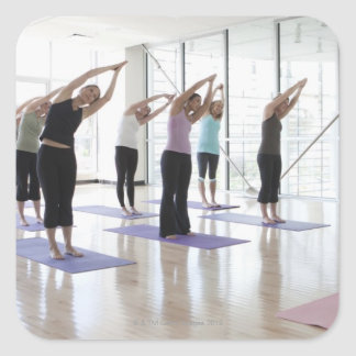 clasifique la yoga practicante con el instructor colcomanias cuadradases