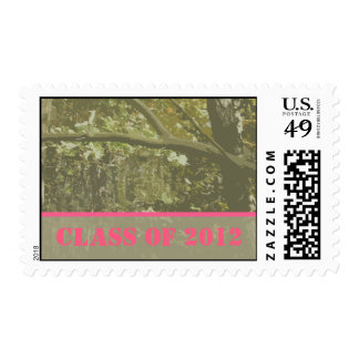 Class of 2012 Camouflage & Pink Graduation Postage