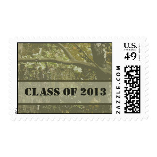 Class of 2013 Camouflage Graduation Postage
