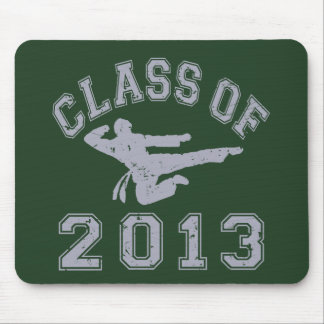 Class Of 2013 Martial Art - Grey 2 Mouse Pad