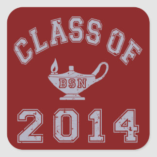Class Of 2014 BSN - Grey 2 Square Sticker