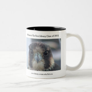Class of 2015 Falcon mug