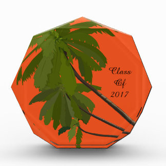 Class Of 2017 Graduation Party Palm Trees Orange Award