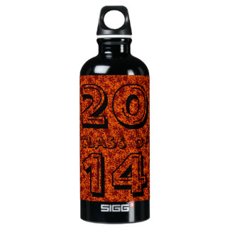 Class Of Orange and Maroon Star Team Spirit Colors SIGG Traveler 0.6L Water Bottle
