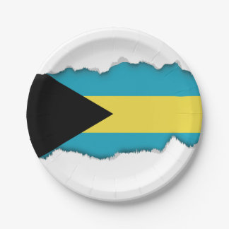 Classic Bahamian Flag Paper Plate