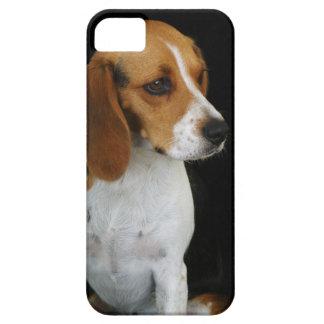 Classic Beagle iPhone SE/5/5s Case