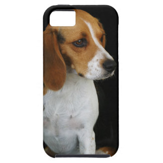 Classic Beagle iPhone SE/5/5s Case