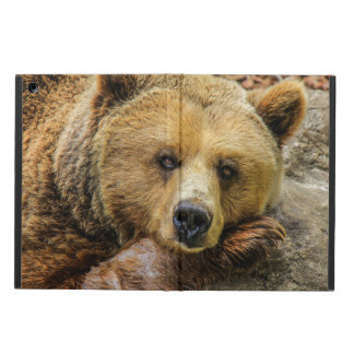 Classic bear cover for iPad air