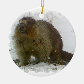 Classic Beaver Ornament