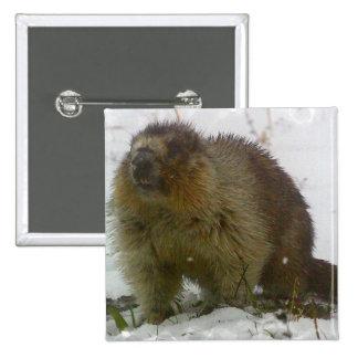 Classic Beavers Square Pin