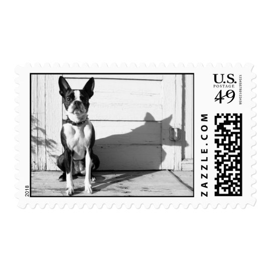 Classic black and white Boston Terrier stamp