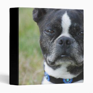 Classic Boston Terrier Dog Binder