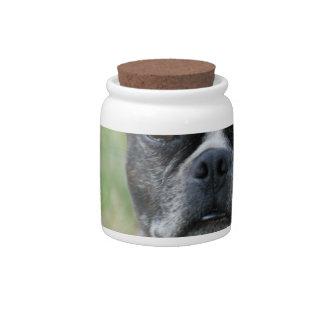 Classic Boston Terrier Dog Candy Jar
