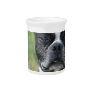Classic Boston Terrier Dog Drink Pitcher