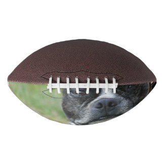 Classic Boston Terrier Dog Football