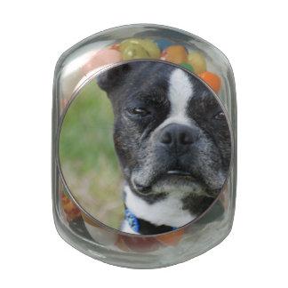 Classic Boston Terrier Dog Glass Candy Jar