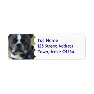 Classic Boston Terrier Dog Label
