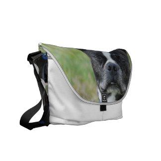 Classic Boston Terrier Dog Messenger Bag