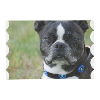 Classic Boston Terrier Dog Placemat