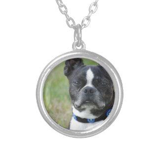 Classic Boston Terrier Dog Round Pendant Necklace
