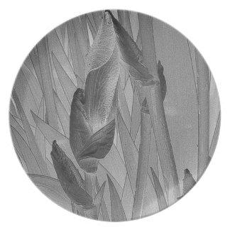 Classic Botanical Iris Buds on a Plate