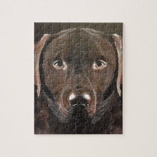 Classic Chocolate Labrador Jigsaw Puzzle