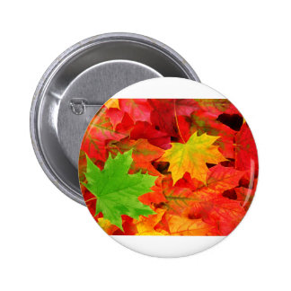 Classic Colored Autumn Fall Leaf Print 2 Inch Round Button