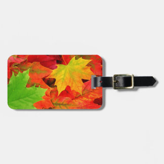 Classic Colored Autumn Fall Leaf Print Luggage Tag
